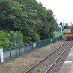 The train moving into Freshwater station from Cairns