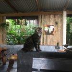 Photo de Lanta Happy Hill Resort