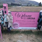 Cardrona's Bra Fence is just a few minutes away
