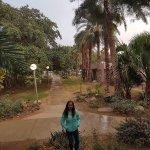Photo of Kibbutz Ein Gedi Country Hotel