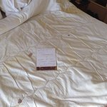 Disgusting mattress topper on the beds in deluxe double rooms, dried blood and urine .. just as
