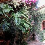 Photo of Los Girasoles