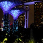 Photo of Flower Dome