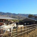 Foto de Tanque Verde Ranch