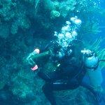 Dive master Greg cuddles a giant grouper