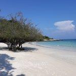 Photo de Paradee Resort