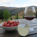 Afternoon view of mountains with wine