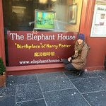 Photo de Elephant House