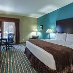 百靈拉昆塔套房飯店照片