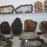 The fossil collections of Macro Fossiles Kasbah