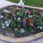 Nice flowers and gardening!