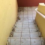 Foto van Desert Gardens Hotel, Ayers Rock Resort