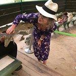 Photo de Crocodile Adventureland Langkawi