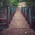 Photo de Karura Forest