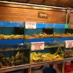 Orkid Ria Seafood Restaurant resmi