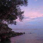 Photo of Bluewater Panglao Beach Resort