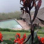Foto di Birdnest Resort - Lake Bunyonyi