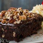 spur pecan nut brownie