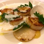 scallops highly recommend