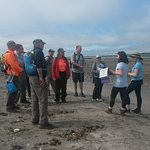 Maugers Beach guided tour Friends of McNabs Island