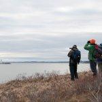 Bird watchers on McNabs Island