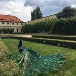 Fotografie: Palácové Zahrady