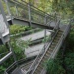 捷徑樓梯直達下一層