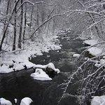 Winter-Bode