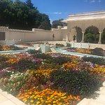 Hamilton Gardens Walled garden