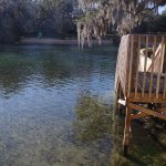 Foto de Salt Springs Recreation Area