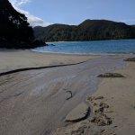 the hike from Tonga Beach to Medlands Beach