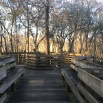 Best place to cool down and relax ! This park has beautiful board walks to cuddle the nature , r