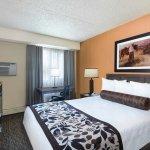 Standard room w/ queen bed.