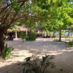 Photo of Evolution Resort