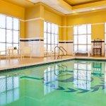 Photo of Sheraton Baltimore Washington Airport Hotel - BWI