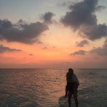 Gangehi Island Resort의 사진