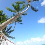 Foto de Little Polynesian Resort