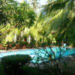 Pool at Bentota Village Hotel