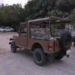 A safari vehicle