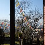 View from room: more prayer flags!