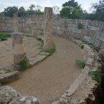 Photo of Salamis