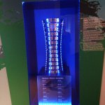 Volvo trophy