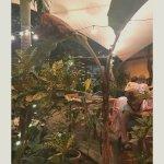 The Secret Garden Restaurant Foto