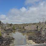 Zdjęcie Finch Bay Galapagos Hotel