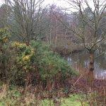Bilde fra Center Parcs Sherwood Forest