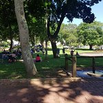 Mitchell Park Photo