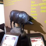 Photo of Museo del Jamon