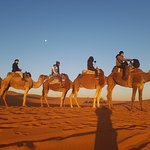 Photo of Morocco Experience Tours