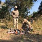 Bush tea on a walking safari