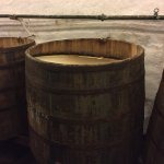 Photo of Pilsner Urquell Brewery